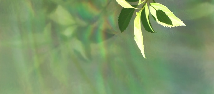Sustainable Metallic Treatments